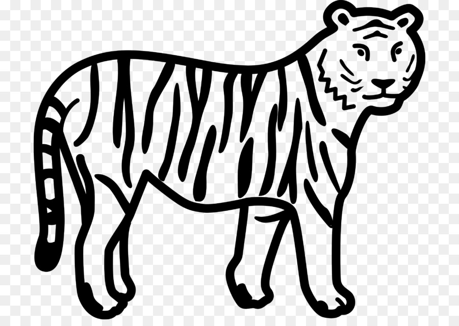Dibujos De Caras De Tigres Para Colorear: Dibujos De Tigre Blanco Para Colorear Archivos Imagenes