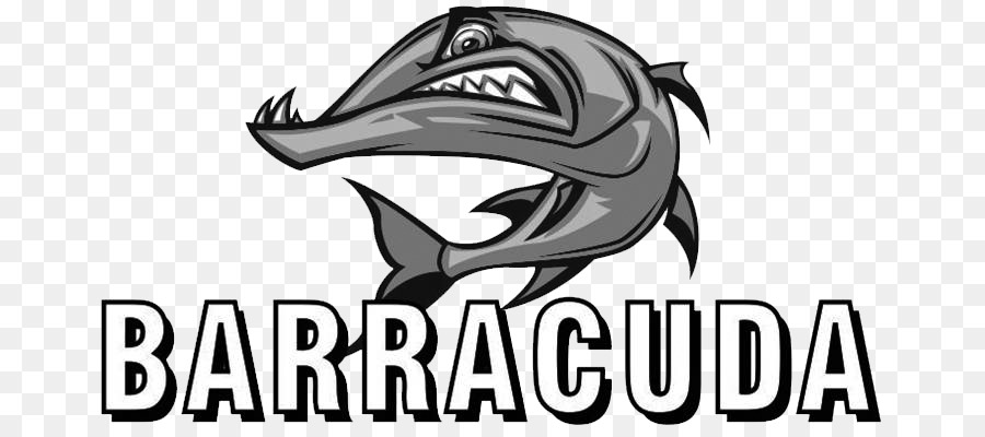 Barracuda Fish Drawing Others Png Download 739390 Free