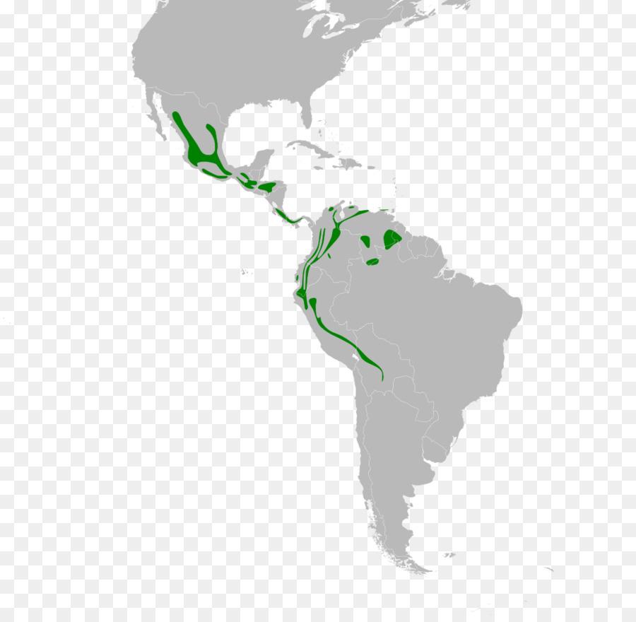 Latin America United States South America Central America Map
