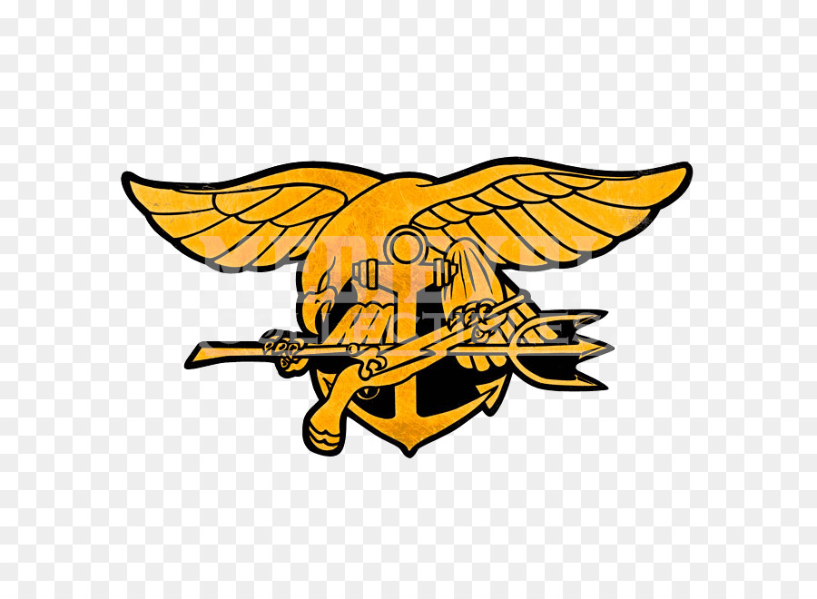 United States Navy Seals Special Warfare Insignia The Navy Seals