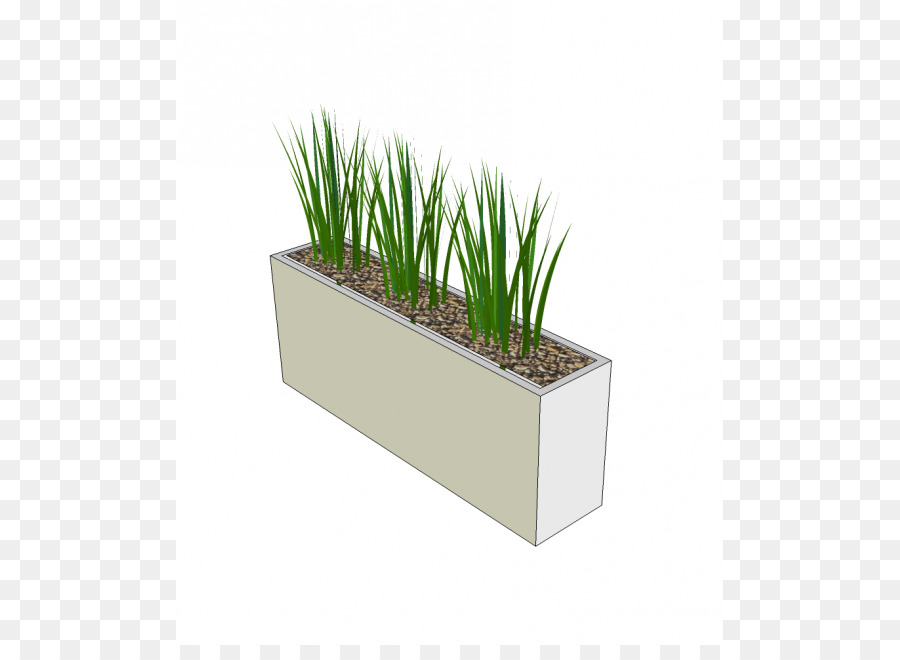Grass Background png download - 645*645 - Free Transparent