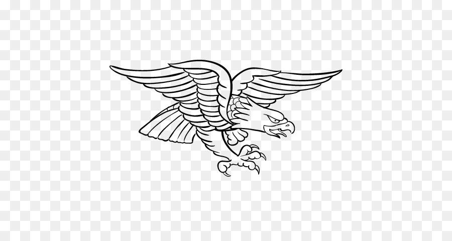 Águila calva libro para Colorear de Aves el Águila Arpía - águila ...