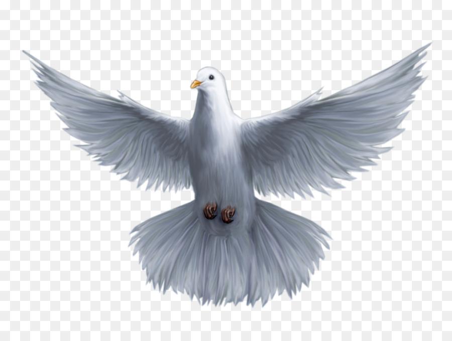 Holy Spirit God Saint Trinity