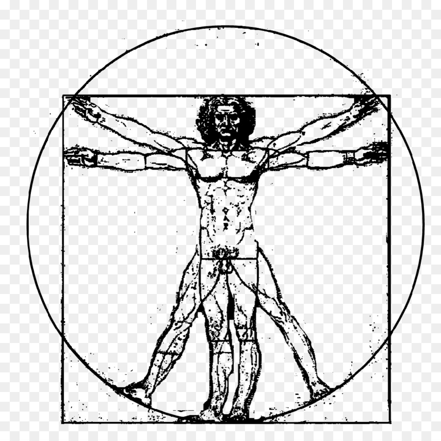 Hombre de vitruvio de La Creación de Adán - Hombre de vitruvio png ...