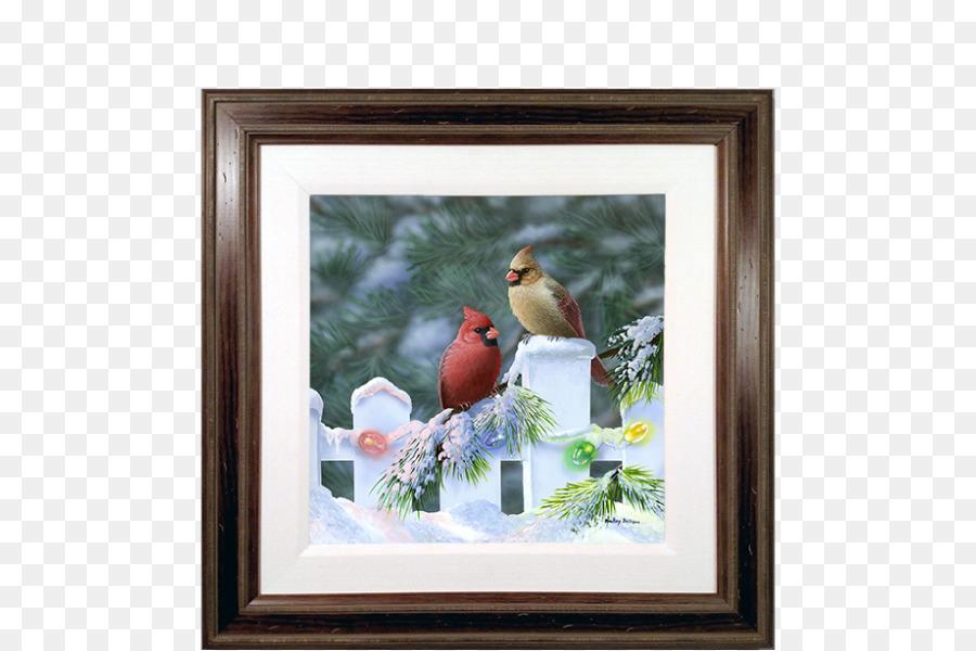 St. Louis Cardinals Northern cardinal Vogel Weihnachten - Vogel png ...