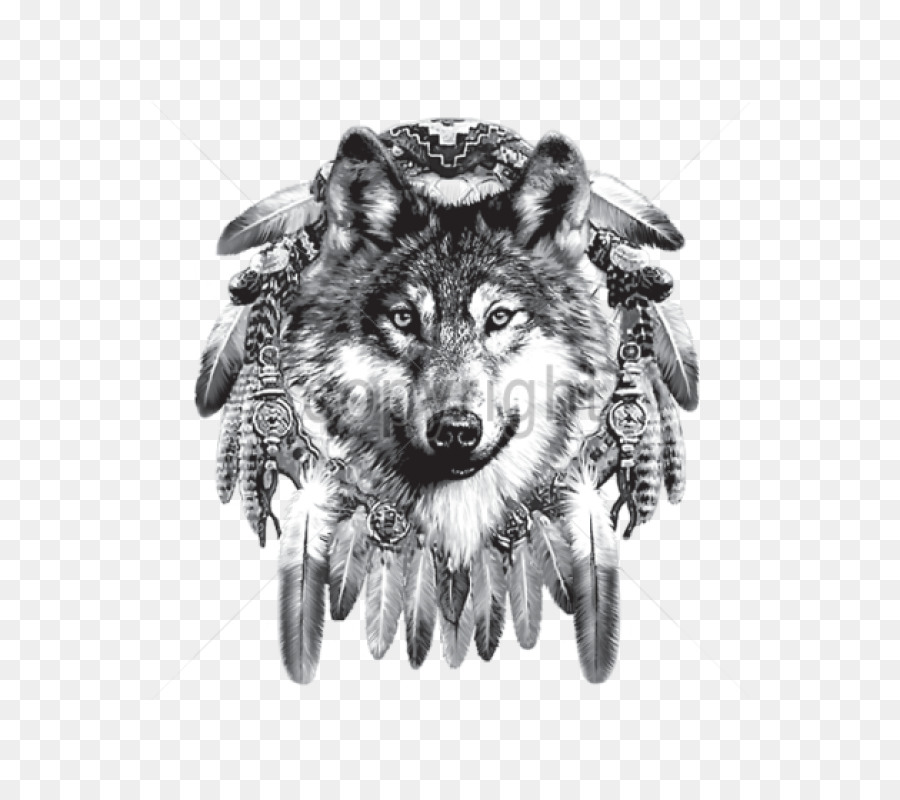 Indian Wolf Dreamcatcher Native Americans In The United States Beauteous Wolf Head Dream Catcher