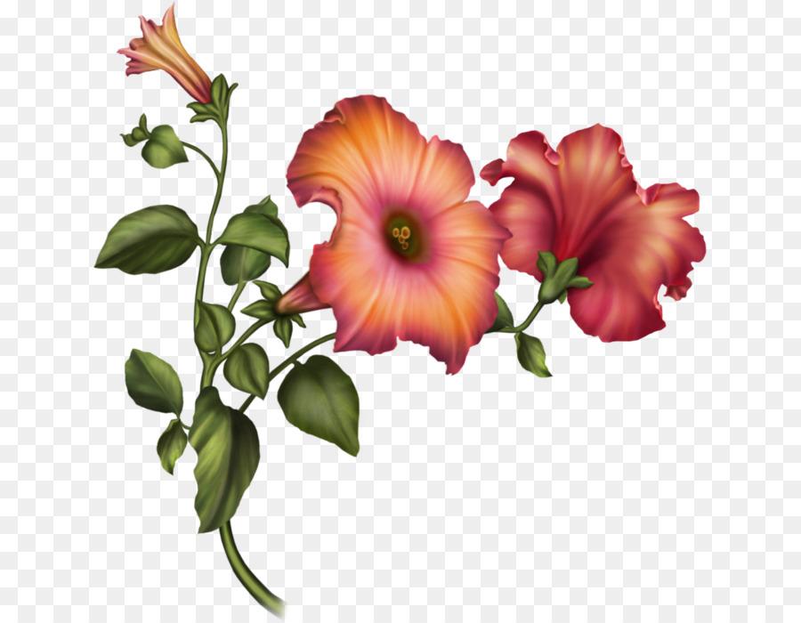 Cut Flowers Floral Design Hibiscus Flower Bouquet Flower Png