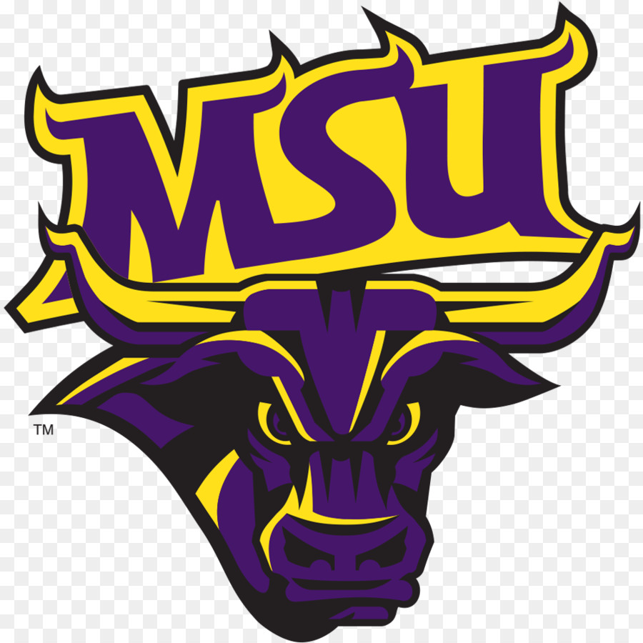 Minnesota State University Mankato Minnesota State Mavericks Mens