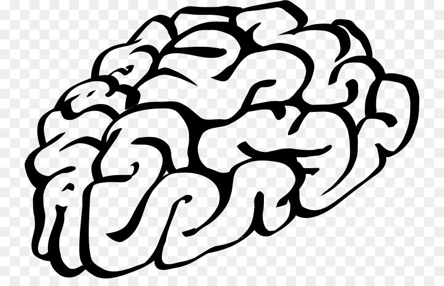 brain clip art brain png download 800 565 free transparent rh kisspng com free cartoon brain clipart