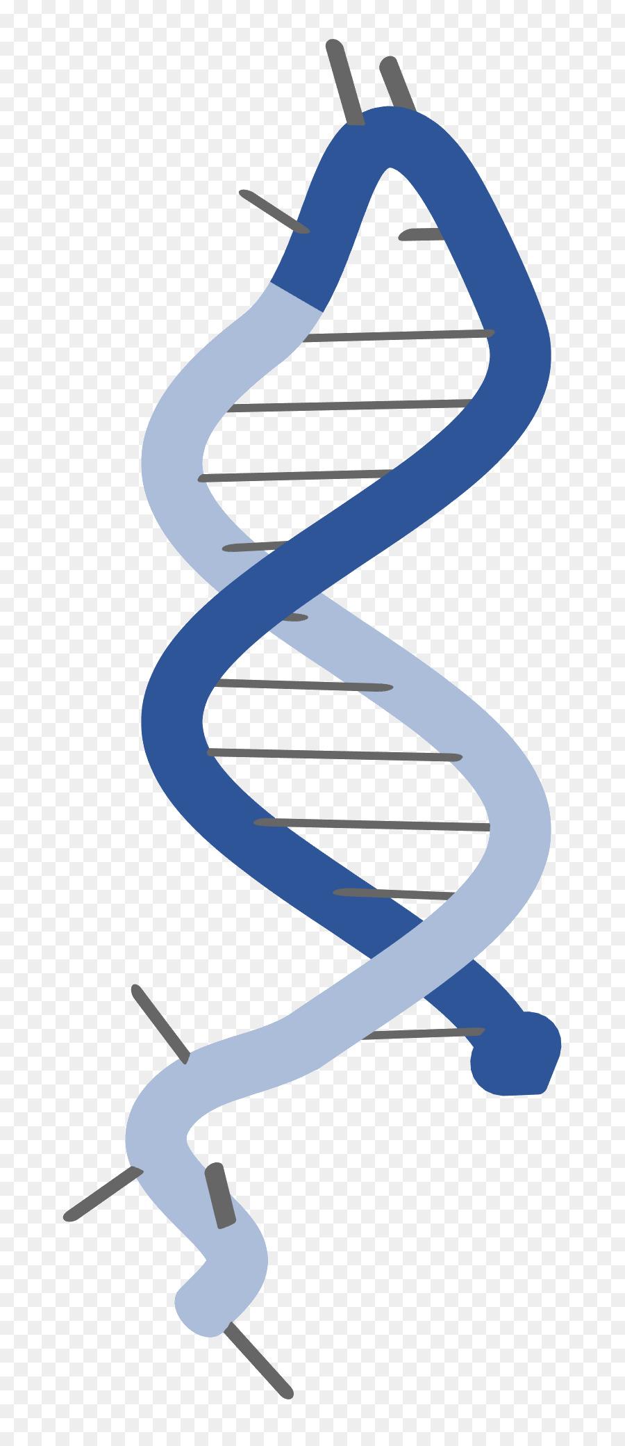 molecular biology, biology, messenger rna, line, diagram png