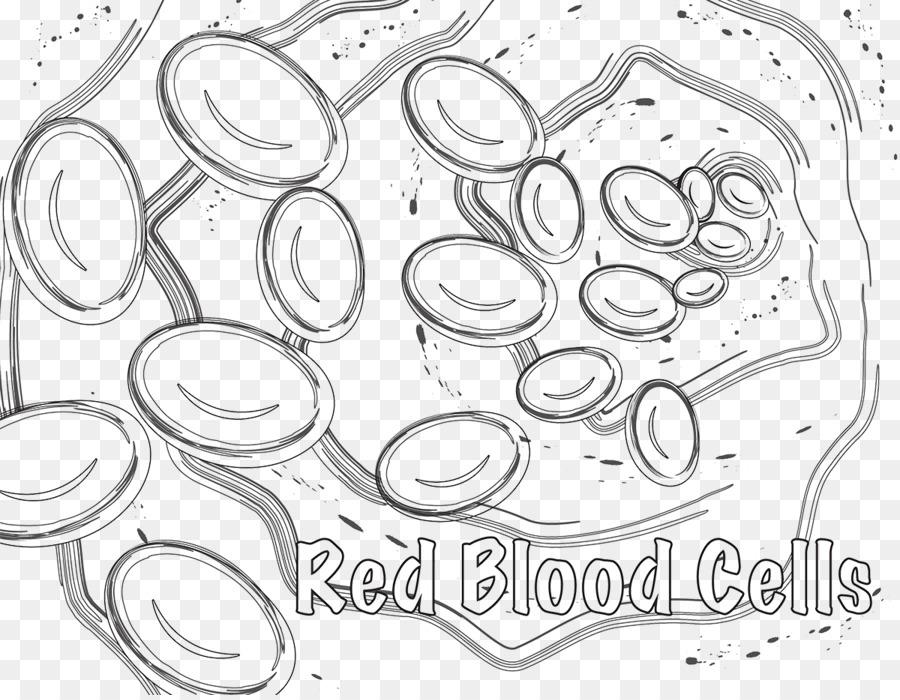 Glóbulos rojos libro para Colorear de célula Blanca de la sangre ...