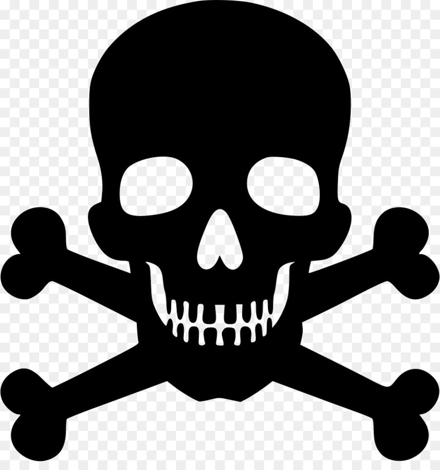 Human Skull Symbolism Skull And Crossbones Symbols Of Death Skull