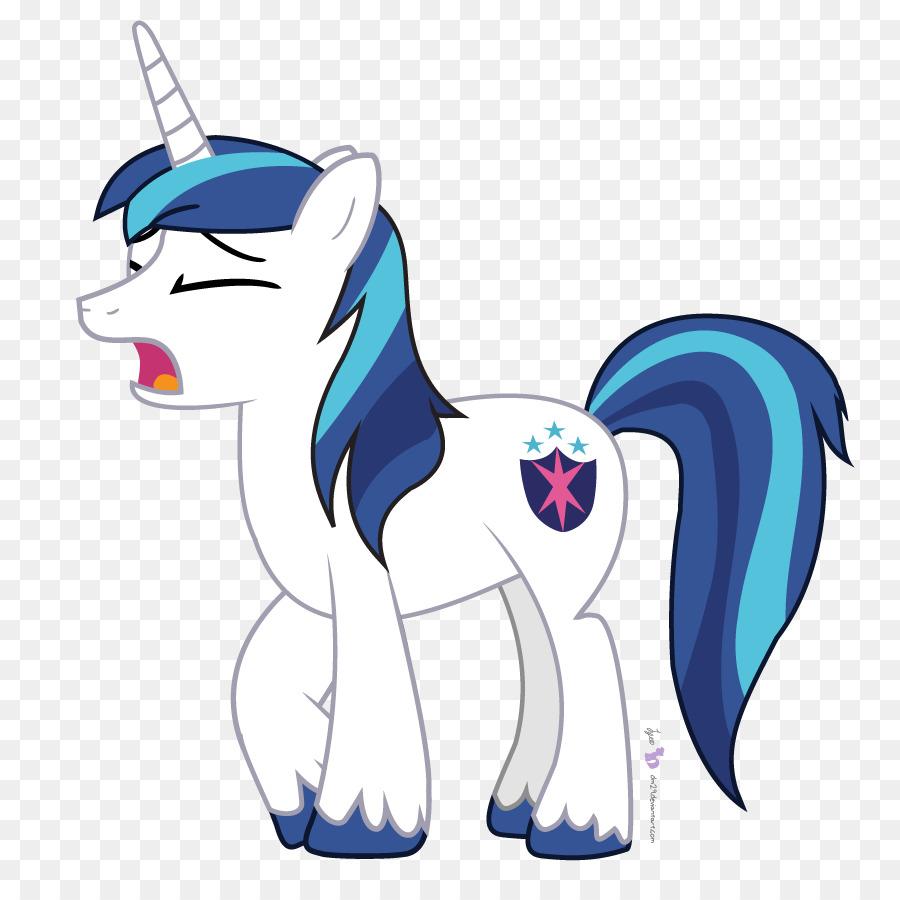 twilight sparkle flash sentry rainbow dash pony shining armor my