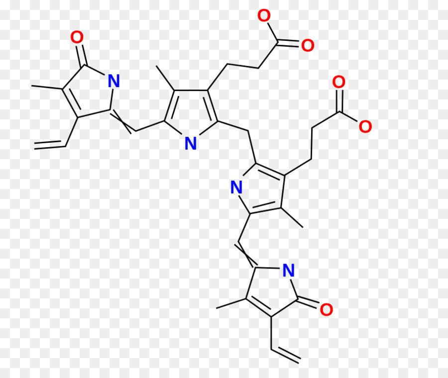 La biliverdina Orina de la Hemoglobina sistema Excretor Renal - la ...