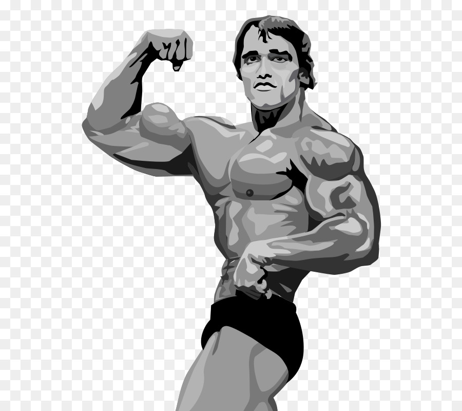 arnold schwarzenegger terminator 2 judgment day bodybuilding