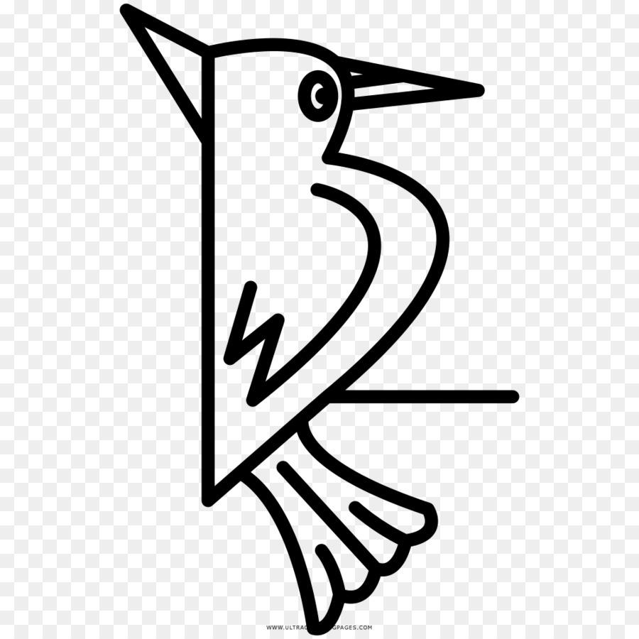 Woodpecker Bird Drawing Coloring Book Beak Bird Png Download