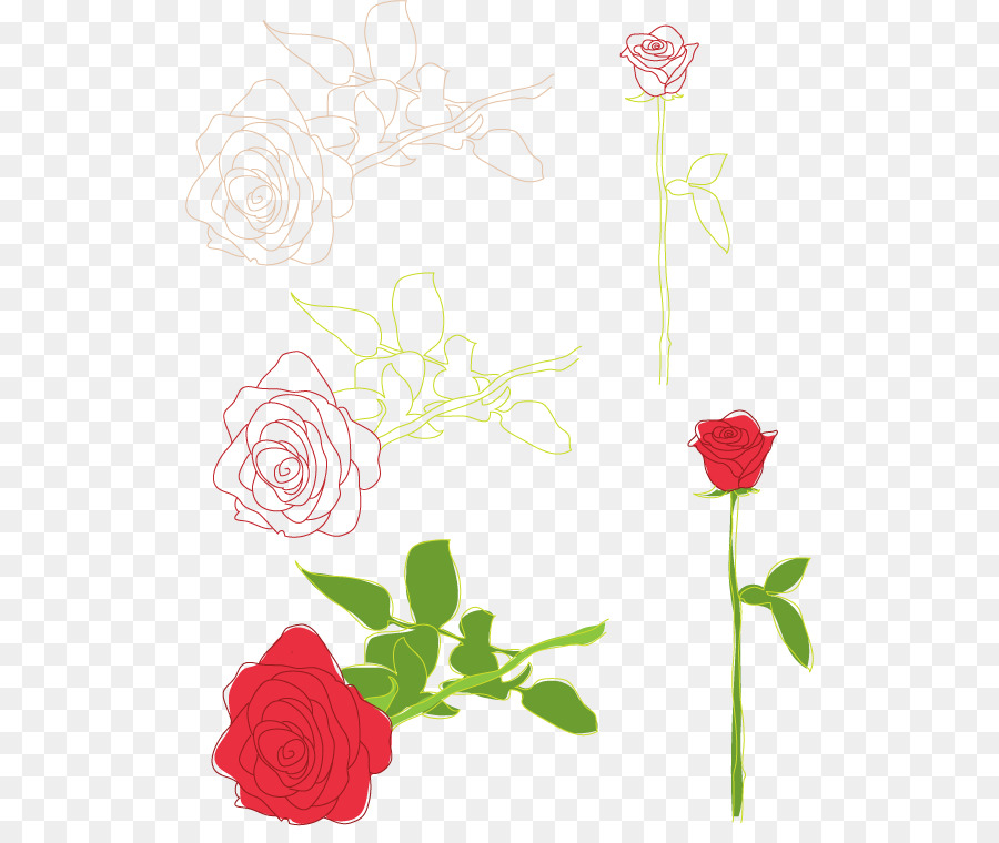 Rose Drawing Clip Art Rose Png Download 566 745 Free