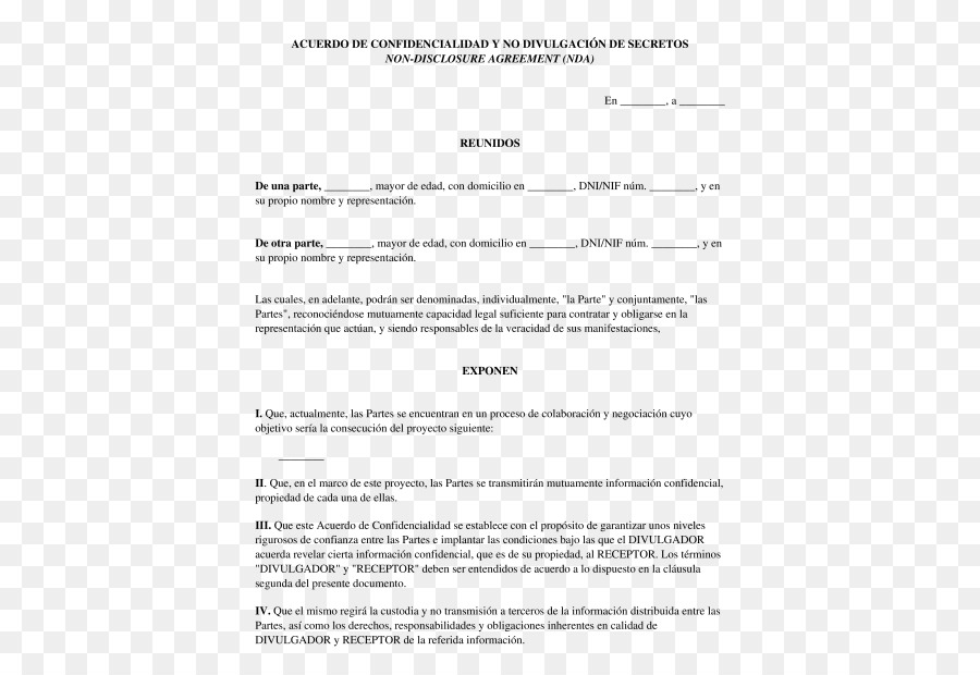 Document Non Disclosure Agreement Contract Confidencialidad Pact