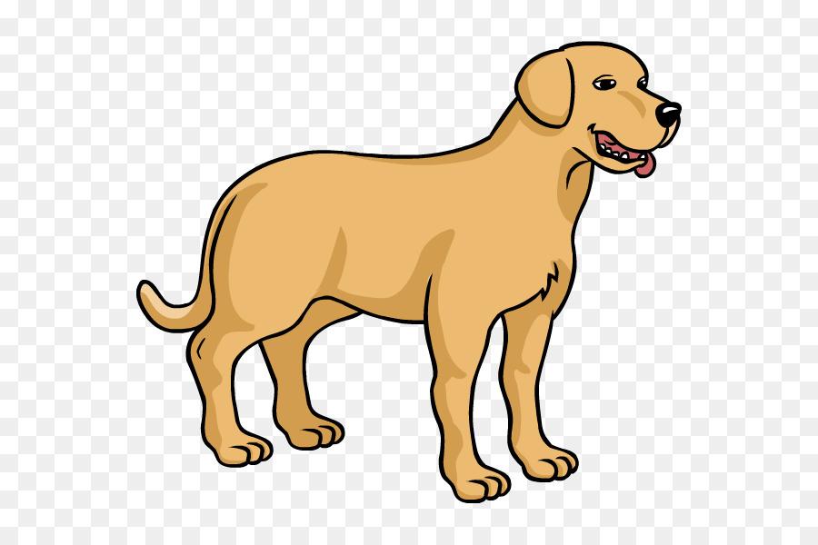 Dog Breed Puppy Labrador Retriever Como Dibujar Una Guía De