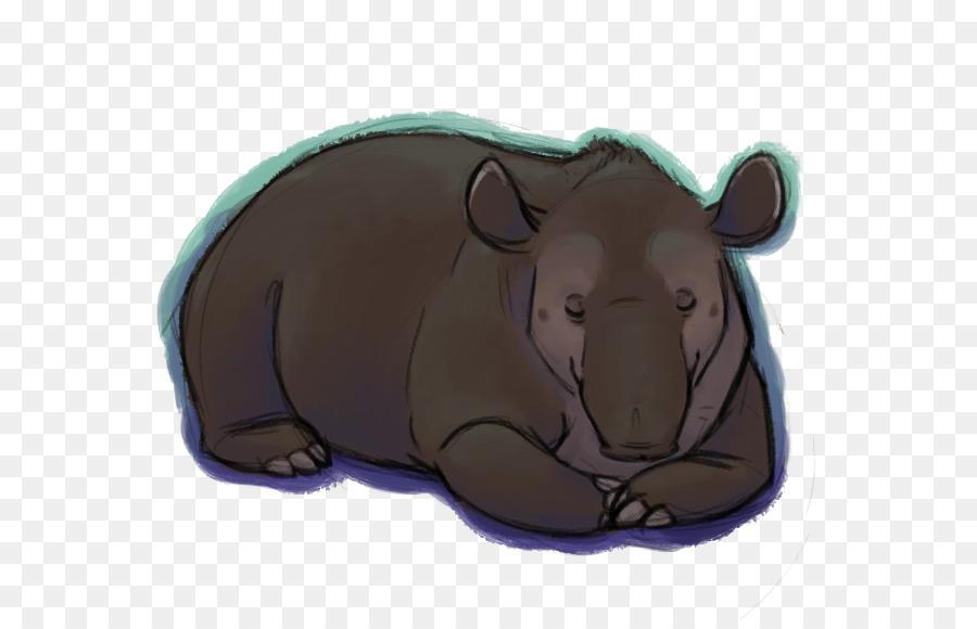 Orso maiale muso di cartoni animati orso scaricare png disegno