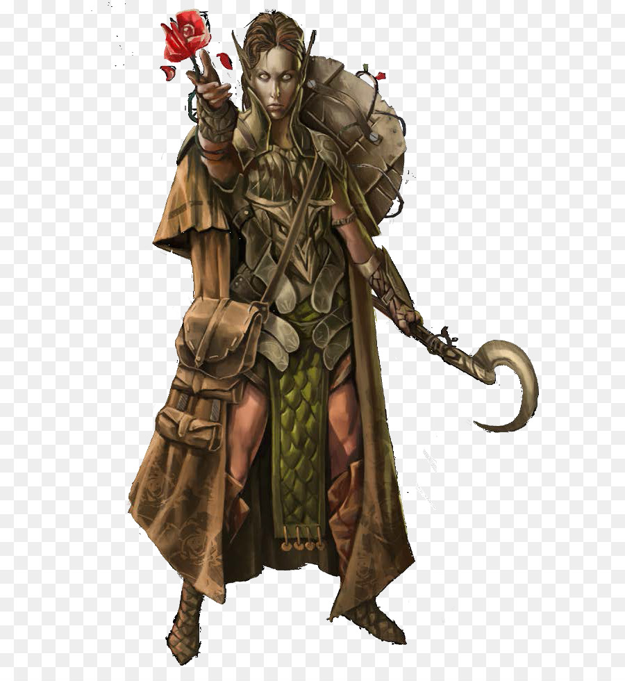 druid pathfinder roleplaying game d20 system dungeons dragons elf