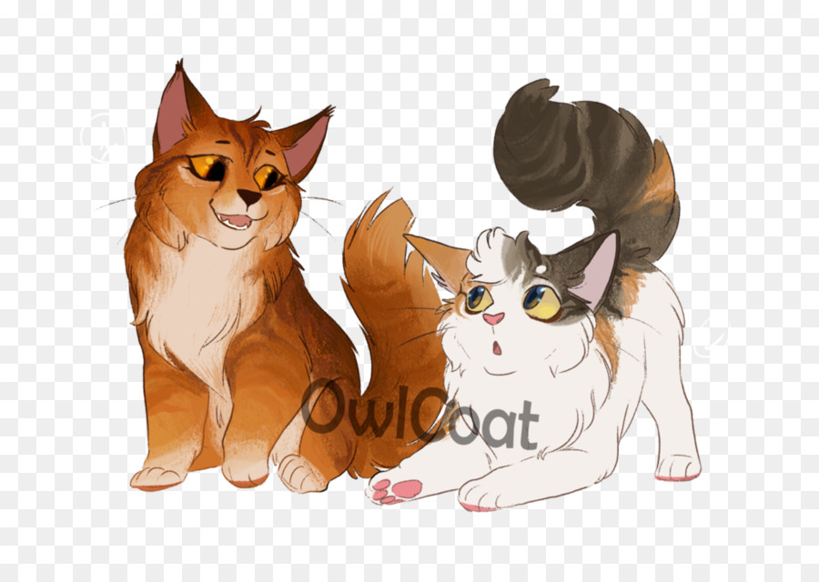 kitten whiskers cat warriors dog kitten png download 1063 752