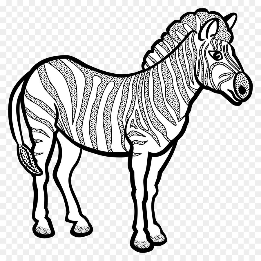 Zebra Coloring book Horse Quagga Clip art - zebra png download ...