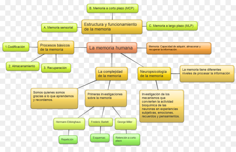 Memory Concept Philosophy Theory Homo Sapiens Map Png Download