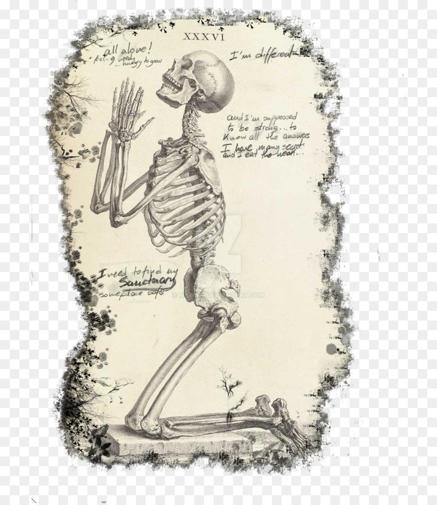 Praying Hands Prayer Human Skeleton The Anatomy Of The Human Body