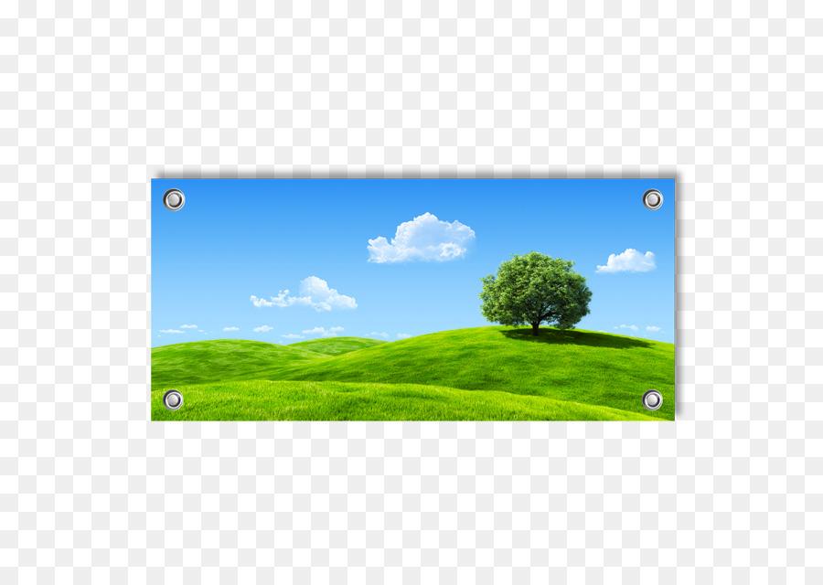 Fotografia Stock Bibbia Sfondo Del Desktop Banner Scaricare Png