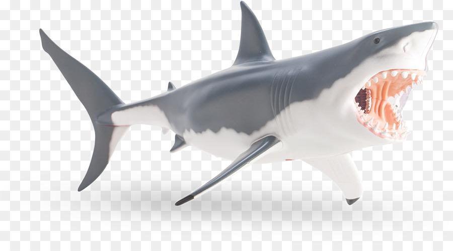Tiburón tigre Gran tiburón blanco, Tiburón anatomía - tiburón ...