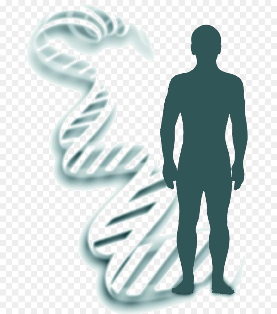 Genetics Heredity Forensic Identification DNA