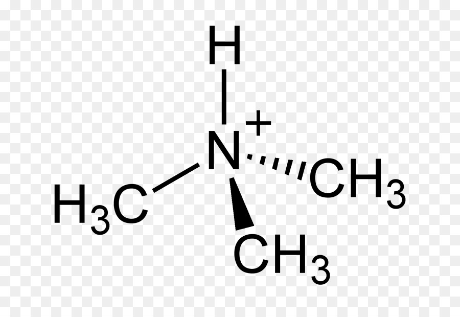 Acetone Trimethylamine Tetramethylammonium Hydroxide Quaternary