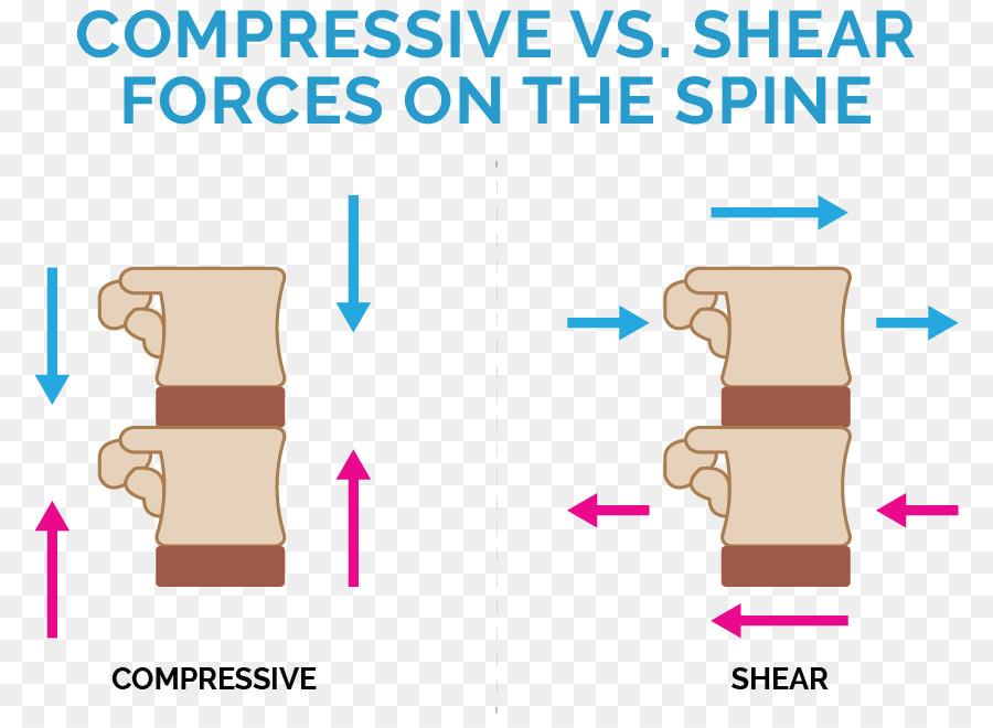 Low Back Pain Human Back Spinal Disc Herniation Finger Low Back