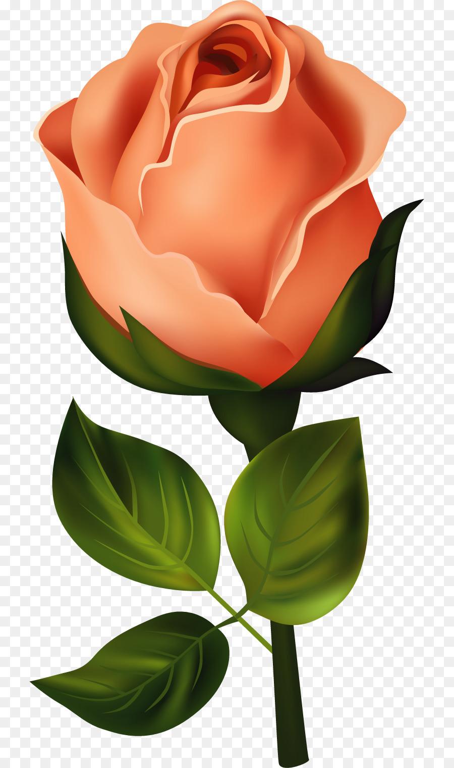 Flower bouquet Rose Birth flower Clip art - flower png download ...