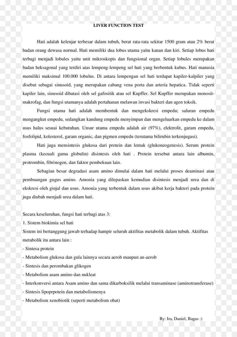 Resumen De La Plantilla De Curriculum Vitae Declaracion Personal De