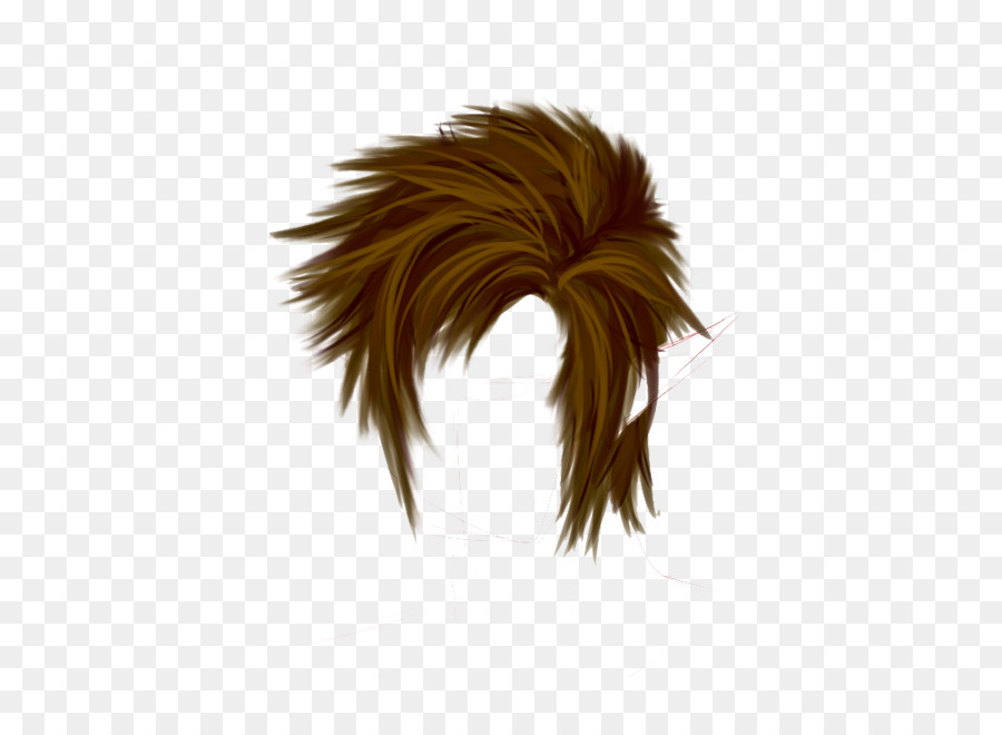Hairstyle Wig Hair Png Download 600 643 Free Transparent