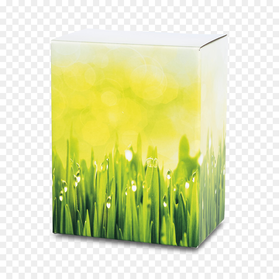 lake shore funeral home cremation urn medow png download 2048