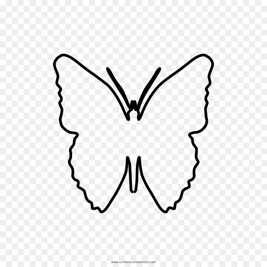 Monarch Kelebek Siyah Ve Beyaz çizim Boyama Kitabı Kelebek Png