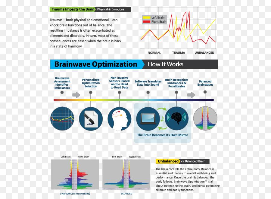 Neural Oscillation Brainwave Entrainment Alpha Wave Human Brain
