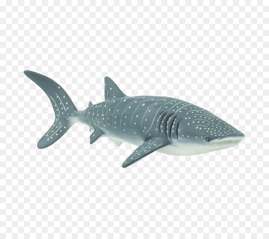 Tiburón tigre Isurus oxyrinchus tiburón Ballena Cetacea Gran tiburón ...