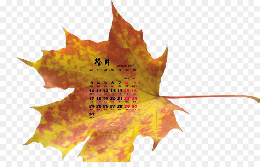 Maple Leaf Desktop Wallpaper Autumn Leaves Autumn Leaves Png