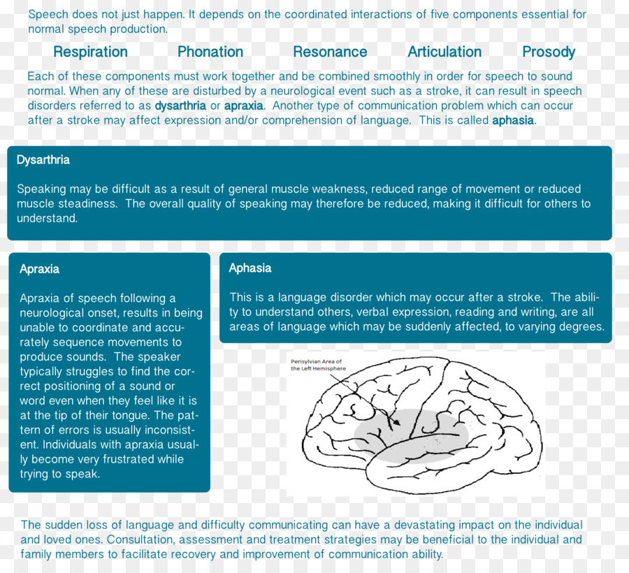 Speechlanguage Pathology Text png download - 5154*4630