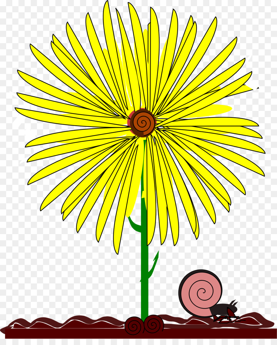 Common Daisy Yellow Flower Clip Art Flower Png Download 1460