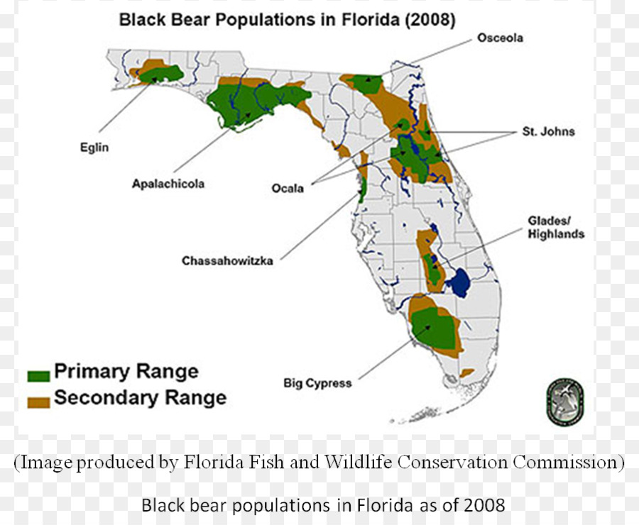 Alligators In Florida Map Bear Tree png download   902*740   Free Transparent Bear png Download.