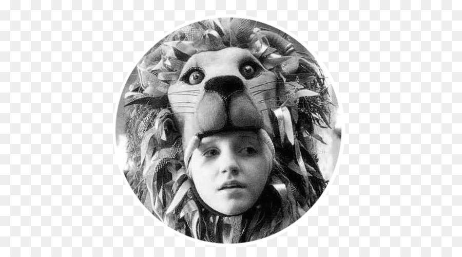 Luna Lovegood Evanna Lynch Lion Hermione Granger Harry Potter Lion