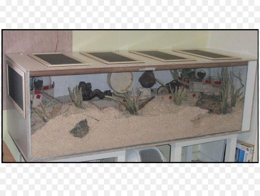 Onwijs Glas Material Aquarium Poly Architectural engineering - Hamster TZ-27