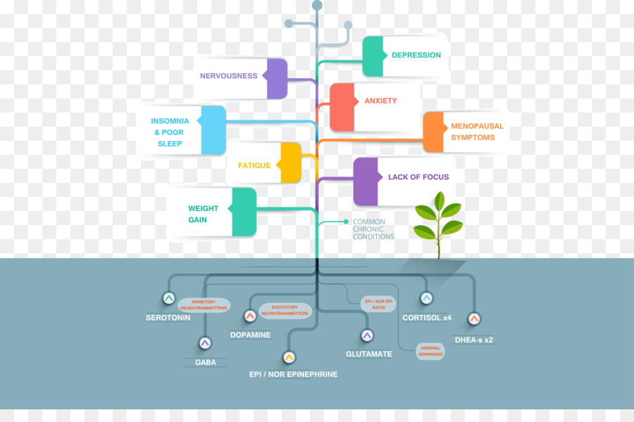 Infographic Timeline Diagram Graphic Design Template Business Png