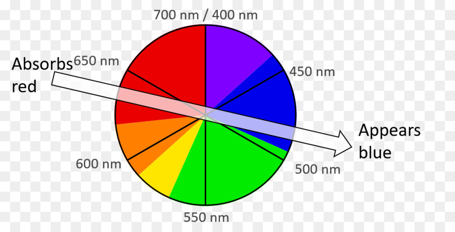 Light Color Wheel Wavelength Spectrum Light Png Download 1009