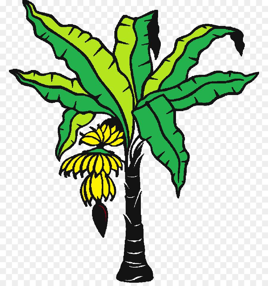 Banana Leaf Coloring Book Drawing